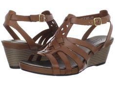 244cf010215f Clarks Lucia Coral.   Zappo s.com T Strap