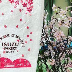 ISUZUベーカリーの袋が桜柄に春が待ち遠しいですね  #ISUZUベーカリー #桜柄