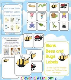 Bees, Bugs and Mini Beasts Themed Blank Classroom Labels - PDF file- 48 pages, plus a 15 page how to use guide, with images all designed by Clever Classroom.    These basic, blank mini-beasts templates can be used as labels to add to your classroom theme.    There are 7 different designs of the s
