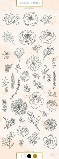 graphic and watercolor collection - Watercolor Shapes, flowers and backgrounds, wedding invitation clipart