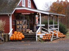 This is the farm right by my house! They have the BEST apple cider donuts. (Terhune Orchards in Princeton, NJ)