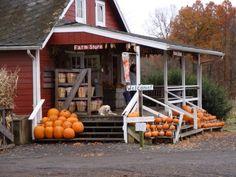 farm stand...