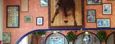 El Taurino is one of The 15 Best Places for a Carne Asada in Los Angeles.