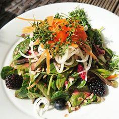 Rethinker / Vegan / Berry Salad