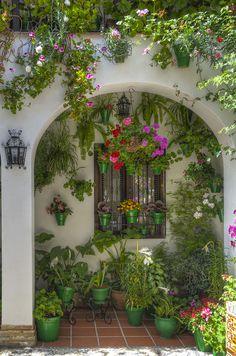 Los Patios de Córdoba - Patrimonio Inmaterial de la Humanidad.                                                                                                                                                      Más