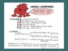 Auscultation of heart murmurs   EMS and Nursing stuff ...