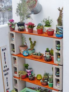 Clay Pot Planters on Cinder Block Shelf. Display Clay Pot Planters on Cinder Block Shelf. Display Clay Pot Planters on Cinder Block Shelf. Cinder Block Shelves, Cinder Blocks, Cactus E Suculentas, Jardin Decor, Cinder Block Garden, Garden Design, House Design, Diy Plant Stand, Plant Stands