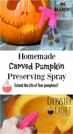 Homemade Carved Pumpkin Preserving Spray - No Bleach! - Easy homemade carved pumpkin preserving spray to keep mold away longer! Extend the life of your car - Diy Halloween Decorations, Halloween Treats, Halloween Pumpkins, Halloween Fun, Halloween Witches, Halloween Quotes, Halloween Halloween, Halloween Flowers, Halloween Labels