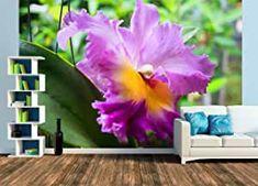 Fototapete Orchidee Wands, Design, Pictures, Dekoration, Orchids, Calendar, Wallpapers, Products, Colors