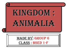 Kingdom animalia by louie