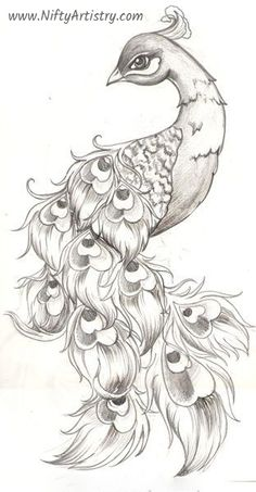 Inspirational tattoos 30 Easy And Practicable Tail And Fur Sketches Pencil Art Drawings, Bird Drawings, Art Drawings Sketches, Tattoo Drawings, Body Art Tattoos, Peacock Drawing, Peacock Tattoo, Peacock Art, Prison Drawings