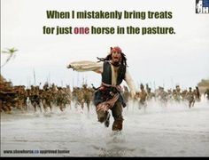 Enough said...Horse Problem #92 -- this is SO true -- especially with all of them back healthy again.