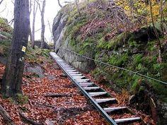Railroad Tracks, Mountains, Places, Travel, Viajes, Destinations, Traveling, Trips, Bergen