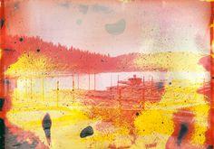 edible silk screens + lake water photographs by matthew brandt