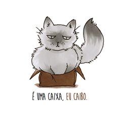 Se quando os humanos saem, os gatos fazem a festa, o que esses felinos diriam pra gente se eles pudessem falar? Confira a série de Manu Cunhas!