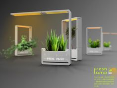 My plants might live longer if it lived in one of these.    Fresh-Lamp – LED Lamp and Flower Pot by Chun Jiang Yao