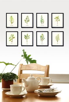 Herb Collection - Set of 8, 5x7 art print, watercolor painting, herbs, Kitchen art, Wall art for kitchen, Green via Etsy