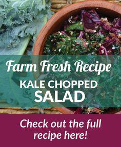 Kale Chopped Salad recipe! Farm fresh! Healthy Thanksgiving Recipes, Healthy Recipes, Classic Salad, Chopped Salad Recipes, Fennel Salad, Saturated Fat, Kale, Cabbage, Fresh