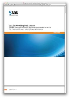 Big Data Meets Big Data Analytics.pdf.png (1045×1460)