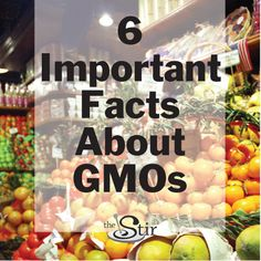 We didn't know all these facts about GMOs! Totally changing the way we grocery shop.  http://thestir.cafemom.com/healthy_living/190092/6_things_you_really_should