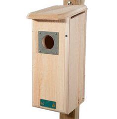 Three Woodpecker House