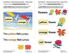 Understand Descriptive Words: Lesson 8, Book 8 (Newitt Prereading Series)