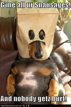 Silly little wiener...lol :)