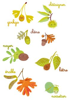 Friendly and smile tree nuts and seeds Autumn Crafts, Nature Crafts, Fall Inspiration, Doodle Inspiration, Moon Painting, Nature Tree, Botanical Flowers, Hello Autumn, Floral Illustrations