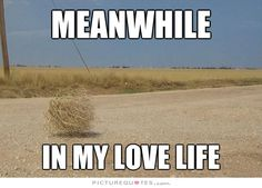 Meanwhile in my love life Love Life Quotes, Sad Quotes, Haha So True, Meanwhile In, Relationship Memes, Life Memes, Picture Quotes, Quotations, Laughter