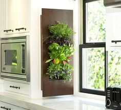 Herbs Within an Arm's Reach. Vertical and decorative gardens ready for use in the kitchen! Another trend for 2012!