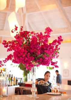 Bougainvillea Flower Spray - one of my fave flowers. Wedding Centerpieces, Wedding Bouquets, Wedding Decorations, Tropical Centerpieces, Floral Wedding, Wedding Colors, Wedding Flowers, Bougainvillea Wedding, Estilo Floral