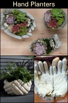 DIY Hand Planters Does your garden need one of these helping hypertufa hands? DIY Hand Planters Does your garden need one of these helping hypertufa hands? Hand Planters, Diy Concrete Planters, Garden Planters, Concrete Garden Ornaments, Concrete Yard, Rocks Garden, Cement Garden, Diy Garden Projects, Garden Crafts