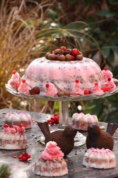 Energiekuchen für die Vögel DIY Vogelfutter Kuchen DIY (Bildquelle: Living & Green)