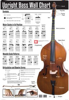 guide to bass guitar scales | Bass guitar scales, Guitar ... |Orchestra Bass Scale Chart