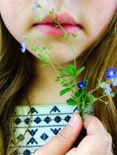 Wild Flowers. 2014
