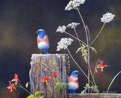 [EndLiss scans - Wildlife Art] Susan Bourdet - Bluebirds