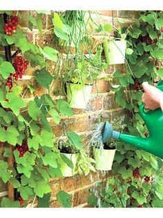 Decorate an outdoor wall with dangling pots and pans #crafts #garden