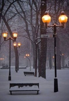 Montreal in winter. It's so beautiful ! Winter Szenen, I Love Winter, Winter Magic, Winter Time, Winter Christmas, Winter Park, Winter Travel, Magic Snow, London Christmas