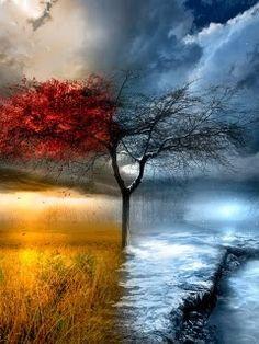 Resultado de imagen de paisaje otoño invierno
