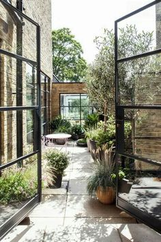 Gorgeous terrace with plants everywhere!
