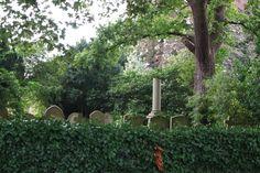 A Ruin Near the Graves