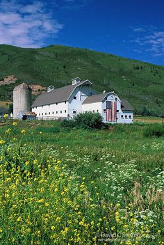 McPolin barn with wildflowers in the summer. Park City, Utah.   ..rh