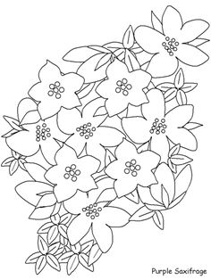 realistic flower coloring pages - Bing Images Coloring Pages Nature, Flower Coloring Pages, Coloring Pages For Kids, Coloring Book, Border Embroidery Designs, Embroidery Patterns, Graphic Design Portfolio Examples, Flower Sketches, Hand Embroidery Flowers