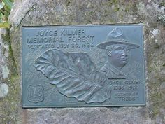 Joyce Kilmer Memorial Forest in North Carolina - on my 'to see' list. Jersey Girl, New Jersey, Most Famous Poems, Waterfall Trail, Seaside Heights, Deciduous Trees, Beaches In The World, New Brunswick, Atlantic City