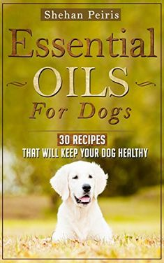 Essential Oils for Dogs: 30 Recipe Blends That Will Keep Your Dog Healthy… Essential Oils Dogs, Essential Oil Uses, Doterra Essential Oils, Young Living Essential Oils, Oils For Dogs, Dog Items, Dog Recipes, Pet Health, Dog Care