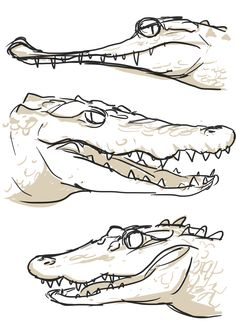 3 Bro by BlackAwader.deviantart.com on @deviantART . Gharial , crocodile , and alligator