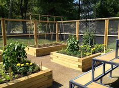 exterior vegetable garden design ideas with rectangle and