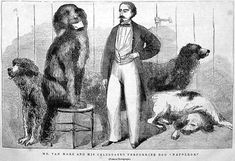 While on board the Inconstant, Napoleon fell overboard and was saved by a Newfoundland (dog). Newfoundland Breed, Dog Died, Like A Lion, Can Dogs Eat, Baboon, Historical Images, Dog Show, Working Dogs, Napoleon