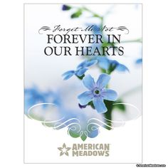 This packet is designed for Memorial Services and Funerals. Filled with Forget Me Not flower seeds, the legend that surrounds this famous flower is detailed on the back of the packet.