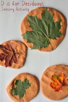 D is for Deciduous: Leaf Stamping With Pumpkin Pie Playdough - Glue Sticks and Gumdrops Forest School Activities, Fall Preschool Activities, Infant Activities, Preschool Crafts, Leaf Projects, Projects For Kids, Crafts For Kids, Art Education Projects, Montessori Art
